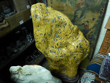 "Petrified Bamboo Rock Stone ""I THINK"""