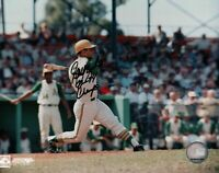 "Sal Bando Signed 8X10 Photo Autograph ""72-74 Champs"" A's Black Ink Auto w/COA"
