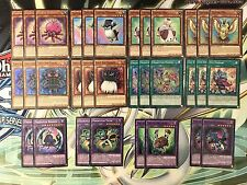 YUGIOH Tournament Winning - Fluffal / Frightfur Kraken / Edge Imp Deck Base HOLO