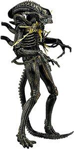 """Aliens Series 12 Brown Xenomorph Battle Damaged Warrior 9"""" Figure"""