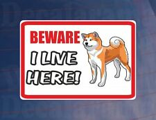 BEWARE I LIVE HERE - AKITA House/Home Window/Door/Porch Printed Sticker