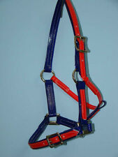 Full Size Halter / Headstall - Blue / Red PVC