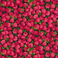 Fabri-Quilt Farmer John's Garden Party Raspberry 100% cotton Fabric by the yard