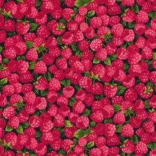 Fabri-Quilt Farmer John's Garden Party Raspberry 100 Cotton Fabric by The Yard