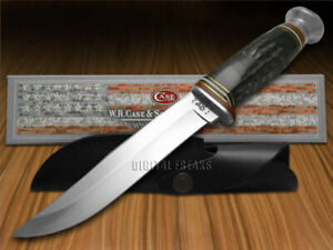 Case xx Fixed Blade Hunter Knife Genuine Buffalo Horn Handle 17912