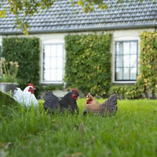 Esschert Deko Huhn Hühner Garten Figur Henne Frost+ UV fest  3 Modelle 37000155