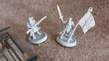 Long Gunner Infantry Officer and Standard kit USED Warmachine Privateer Press