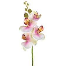 Orchid Phalaenopsis Artificial Silk Upright 57cm White Pink