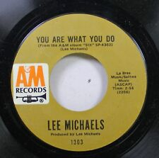 Rock 45 Lee Michaels - You Are What You Do / Can I Get A Witness On A&M