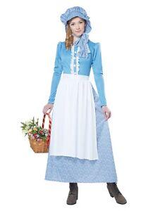 American Settler Woman Prairie Western Ranch Little House Bonnet Holly Hobbie