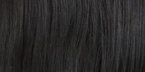 Premium Remy Human Hair Lace Front Monofilament Sienna By Jon Renau Wigs