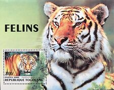 TOGO TIGER STAMPS SOUVENIR SHEET 2000 MNH WILDCAT WILD ANIMALS WILDLIFE NATURE