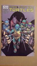 Teenage Mutant Ninja Turtles #25 (IDW) Variant Cover RI ~ High Grade VF-