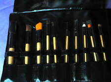 CROWN BRUSH 10-Piece Professional Brush Set Case NEW