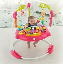 Fisher-Price Pink Petals Jumperoo, Baby Girl Toddler Pink Jumper Brand New