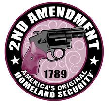 HOMELAND SECURITY 2ND AMENDMENT LADIES NRA GUN PATCH