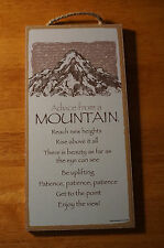 ADVICE FROM A MOUNTAIN - RISE ABOVE BE UPLIFTING Lodge Cabin Sign Home Decor NEW
