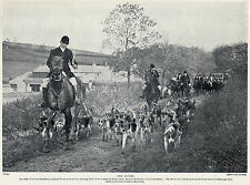 FOXHOUND THE QUORN HUNT AT KIRBY GATE NICE OLD IMAGE 1934 DOG PRINT PAGE