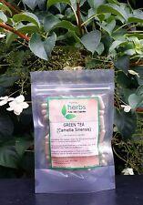 Green Tea (Camellia sinensis) - 100x Pure Herbal Capsules