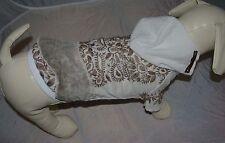 3071_Angeldog_Hundekleidung_HundeBluse_Hund Pulli Kleid_Hundekleid_M Baby