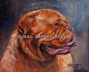 SALE Douge De Bordeaux Signed Dog Print by Susan Harper Unmounted