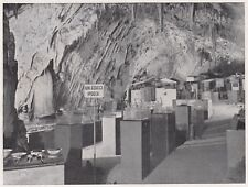 D4547 Slovenia - Grotte Postumia - Reparto studio fauna cavernicola - 1935 print