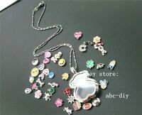 1pcs bear locket necklace floating memory locket pendants chain +13 free charms