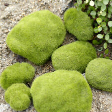 8 Pcs Artificial Fake Faux Emulation Moss Fuzzy Stone Ball Fairy Garden Decor ~
