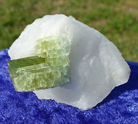 Awesome GREEN TOURMALINE in Clear Quartz Crystal Point Specimen Display Stone