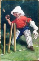 Kinsella/Artist-Signed 1909 Cricket Postcard: 'How's That?'