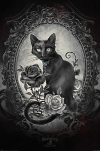 (245) NEW MAXI POSTER ALCHEMY PARACELCUS BLACK CAT GOTHIC PAGAN CULT