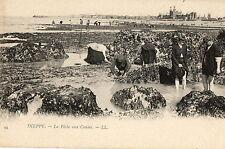 DIEPPE (76) peche à pied pecheurs de crabes