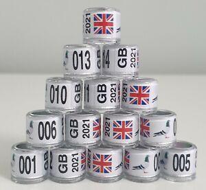 10 x Pigeon Rings 7mm - 2021 GB UK Flag Show Rings *** UNIQUE DESIGN ***