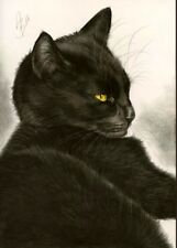 Black cat  schwarze Katze Gatto Gato Gemälde painting drawing Kohle by WuH 96