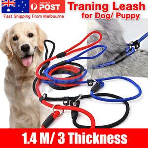 Slip Puppy Lead Nylon Rope Dog Training Correction Leash Pets Cesar Millan AU