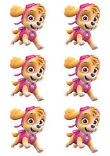 t shirt transfers . iron on  set of 6 paw patrol *  SKYE