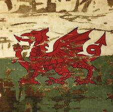 Tex Ex Original Cymru Antiguo Welsh Bandera Cojín Panel Gales Dragon Algodón