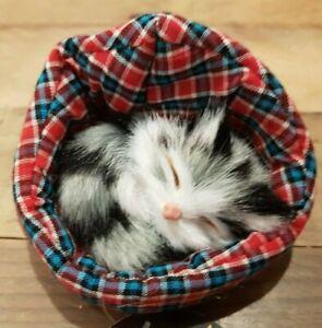Cute little sleeping tabby grey kitten cat on cushion, new with label