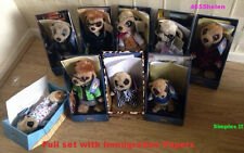 Complete / Full Set Of 9 Compare the Market Meerkat ~ Sergei etc & Immigration