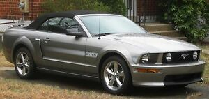 Ford Mustang Black Vinyl 1994-2004