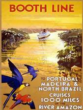 Travel tourism booth line portugal brazil parrot ship liverpool uk poster 2319PY