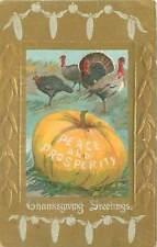 Thanksgiving greetings, turkeys & pumpkin
