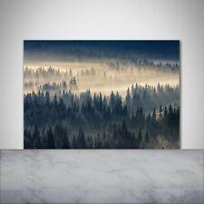 Küchenrückwand Spritzschutz aus Glas 100x70 Landschaften Nebel über dem Wald