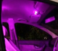 Holden Centre Interior LED VU VY VZ S SS MALOO Commodore UTE Purple Light