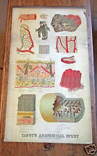 Antique Victorian anatomical poster chart internal organs study Yaggy's