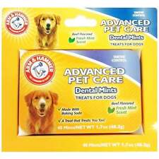 Arm and Hammer Tartar Control Dental Mints Beef for Dogs