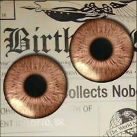 Brown Glass Eyes Realistic Human Doll Taxidermy Eyeball 16mm Set