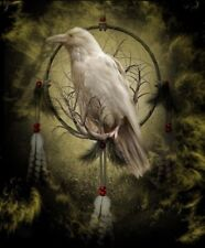 Native American Dream Catcher Magical White Raven 8.5x11 Matte Art (Read Below)
