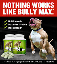 2 X BOTTLES OF BULLY MAX DOG VITAMIN MINERAL SUPPLEMENT - 120 TABLETS IN TOTAL