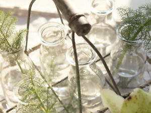 6 GLASS BUD VASE TRAY GARDEN CUTTING FLOWERS HERBS VINTAGE WEDDING CHRISTMAS